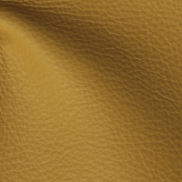 Dreamer Sand