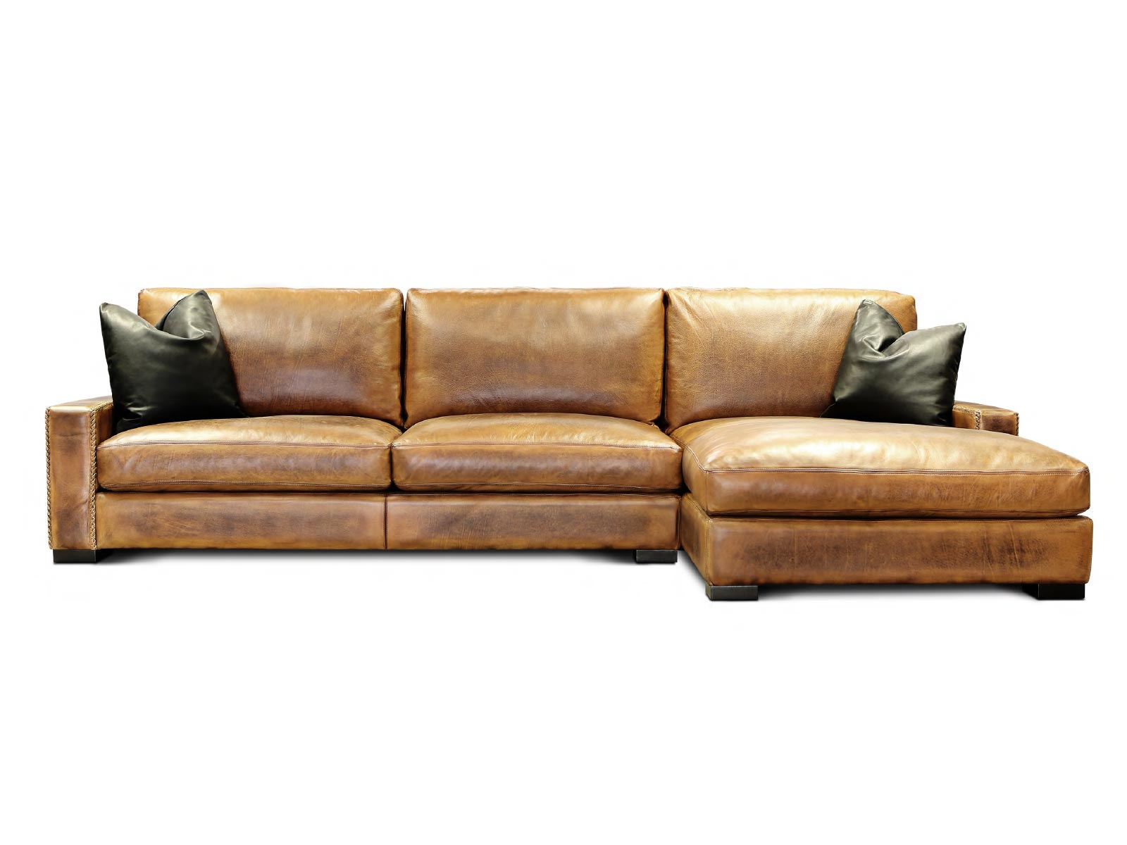 damore-sectional